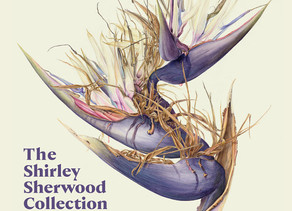 The Shirley Sherwood Collection Modern Masterpieces of Botanical Art - A Review