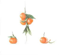 Five Clementines
