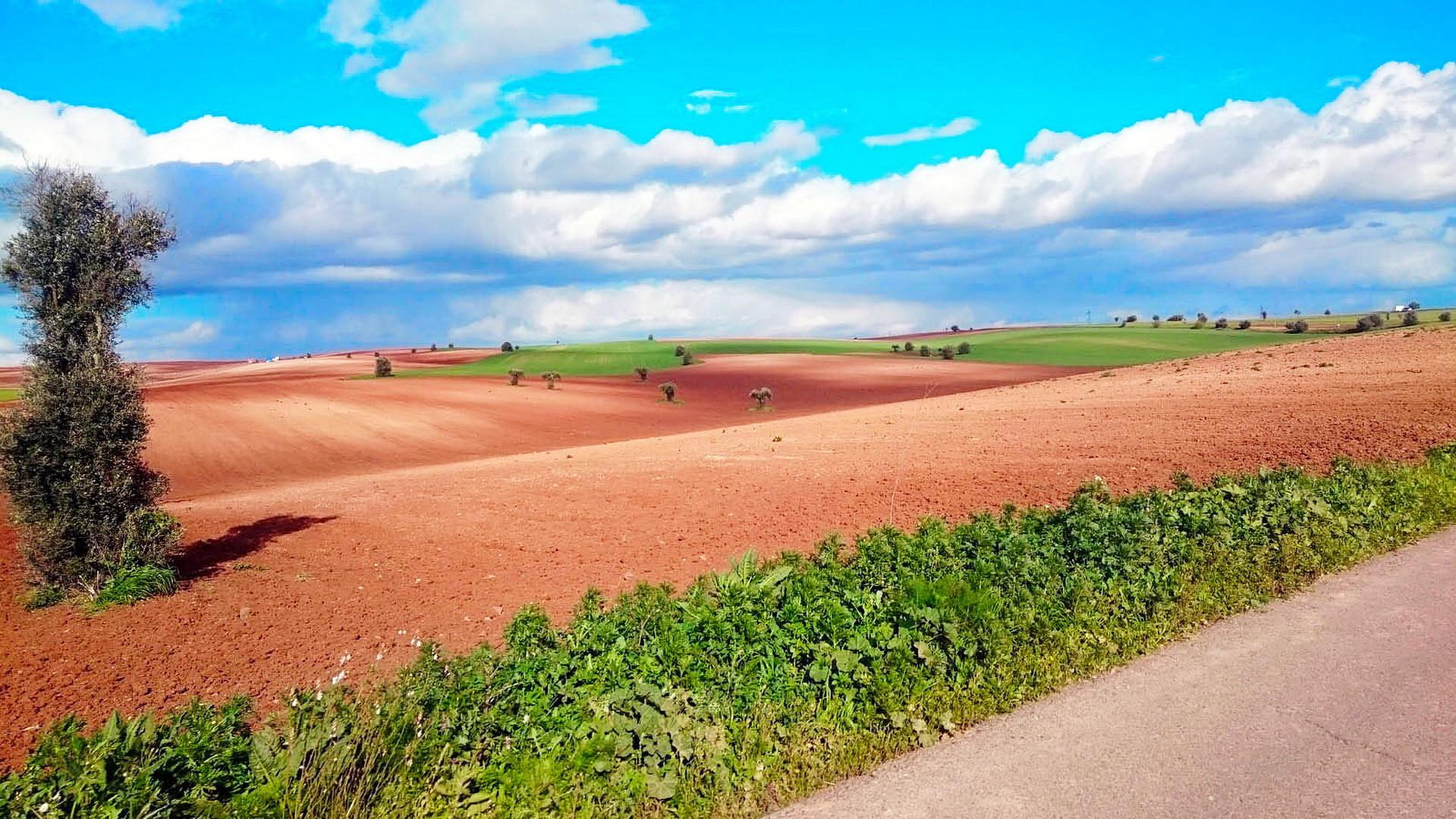 bike-tours-algarve-alg-ale_5.jpg