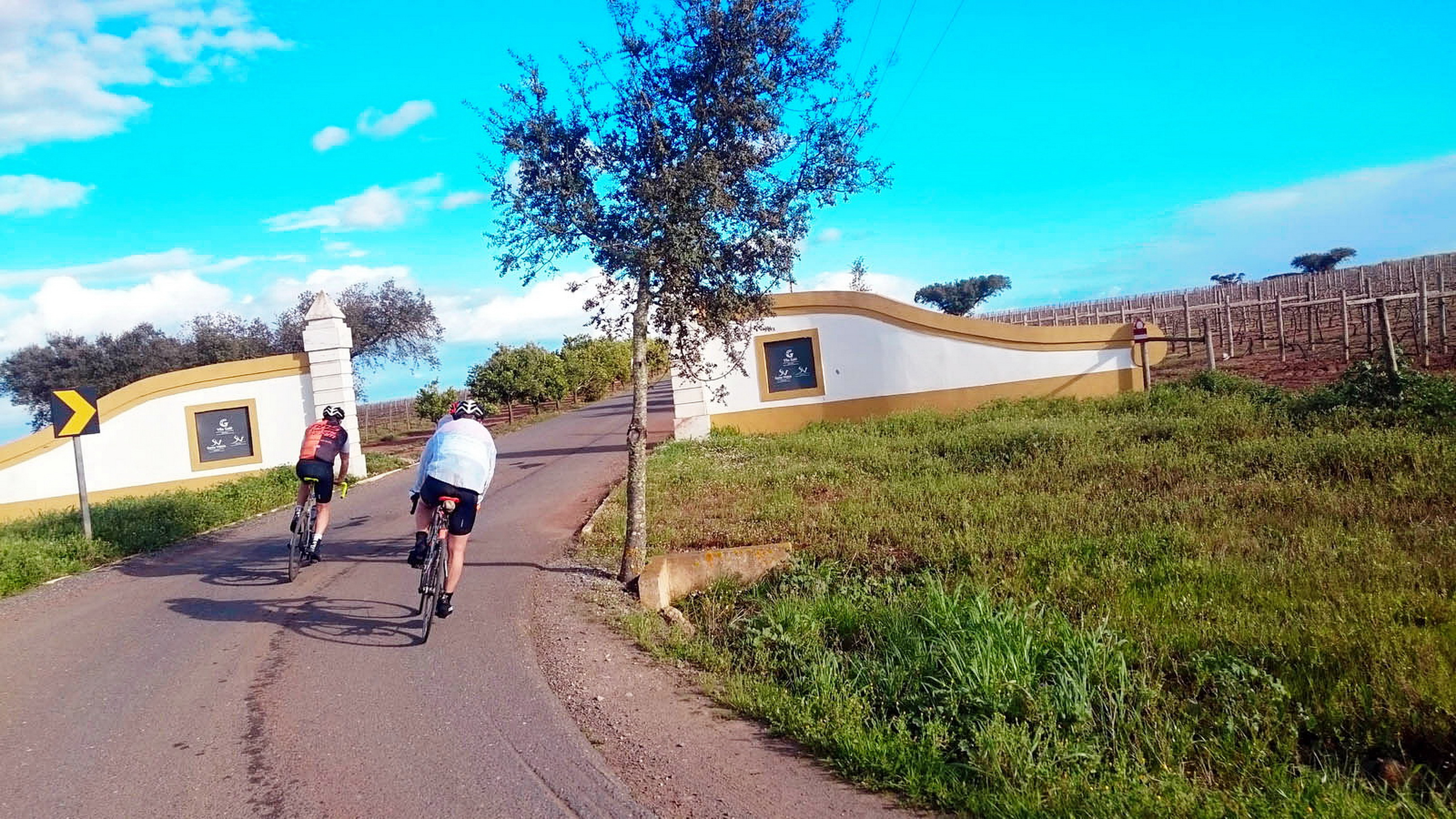 bike-tours-algarve-alg-ale_3