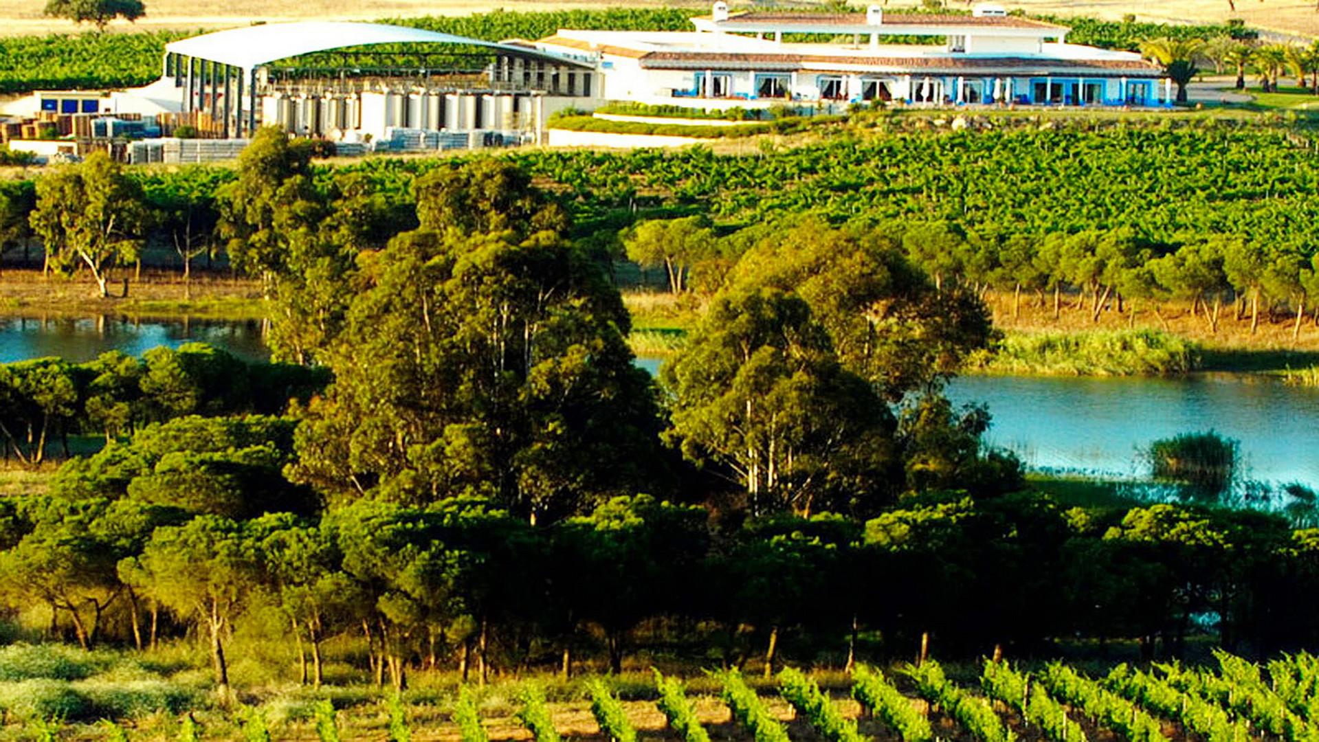 bike tours algarve winetour