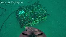 FF5A665E-DF9A-44EA-B8C2-4D7C1C8910CD.jpe