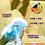 Thumbnail: Lulu Spa Mini Blowup Doll Stroker