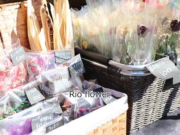 Rioflower