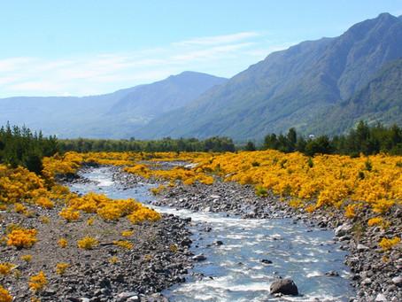 MEE de aguas superficiales comenzó en la Cuenca del Aconcagua
