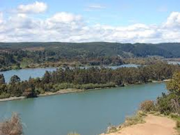 EN VENTA - 50 acc - Río Maule - Canal Zapata o Duao