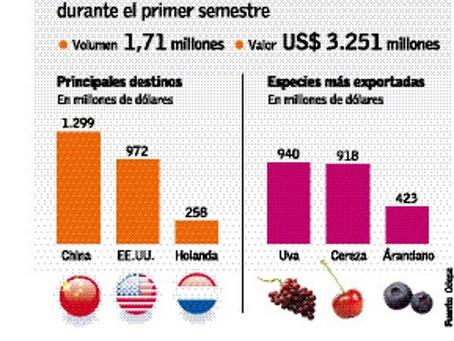 Impacto Pandemia y Sequía: Exportaciones frutícolas caen un 15% en primer semestre