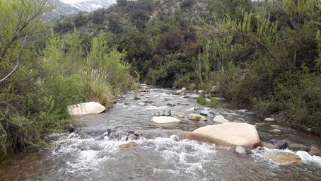 Gobierno anuncia la creación de los nuevos Parques Nacionales Río Clarillo y Salar del Huasco