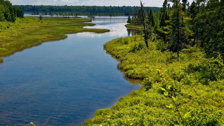 Nueva Junta de Vigilancia en el río Bío Bío: Su labor es velar por el uso sostenible de las Aguas