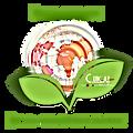 Celticat.fr | Celticat | C.ltic At création Bijoux Miroirs Déco Entreprise Eco-Responsable