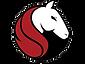 Profile Logo For FB Bronco.png