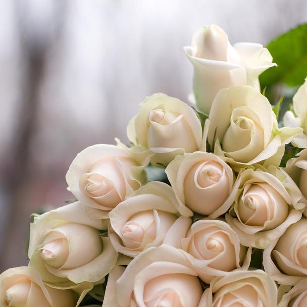 Wedding Journal Website