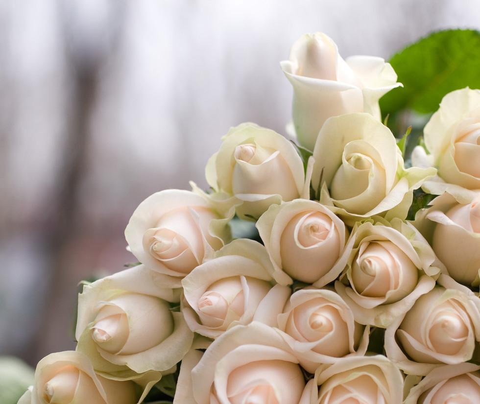 Wedding | club nautico chia