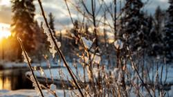 Alaska Snow_1