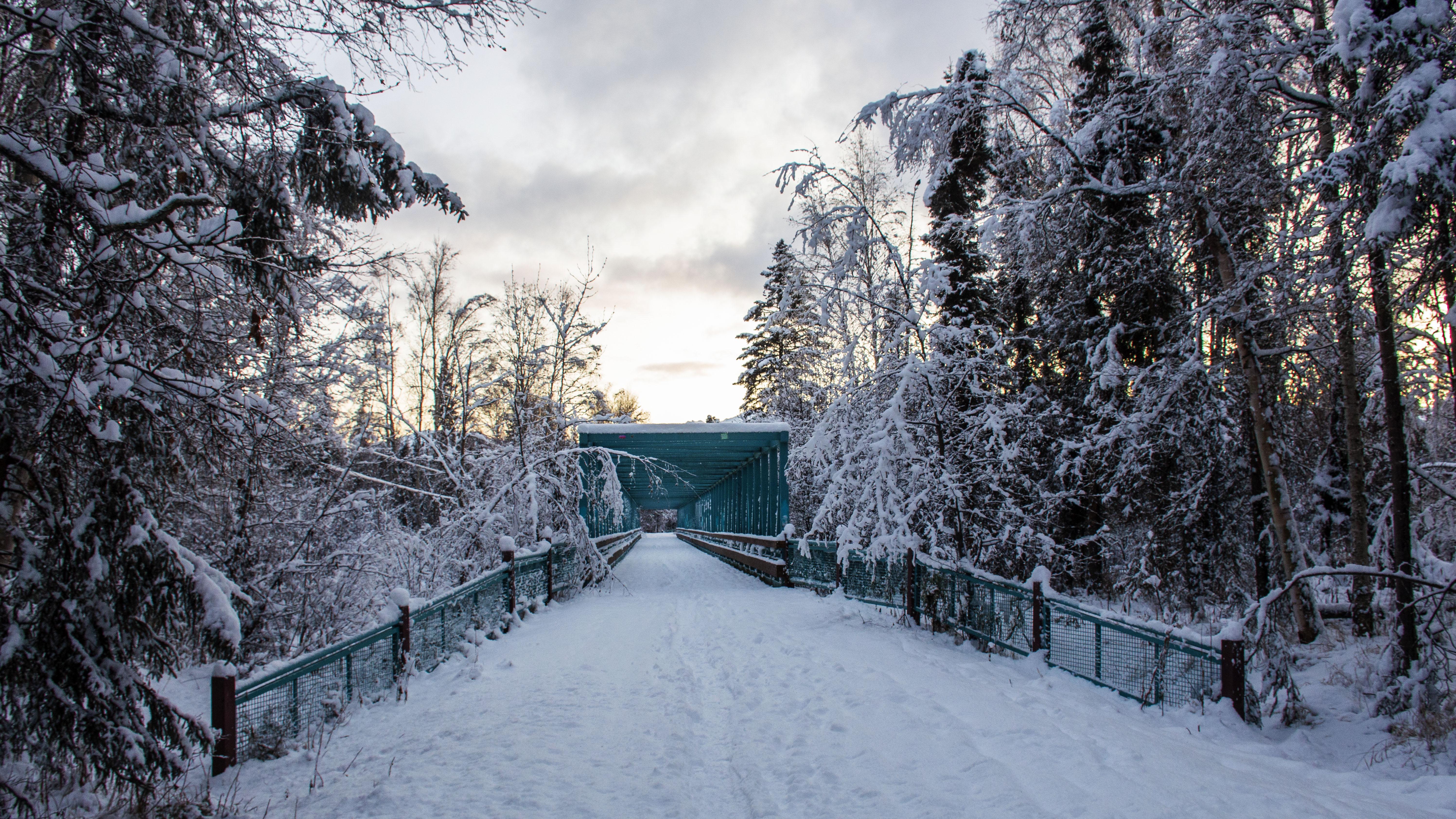 Alaska Snow_6
