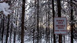Alaska Snow_4