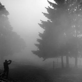 Fotografie Nebel1
