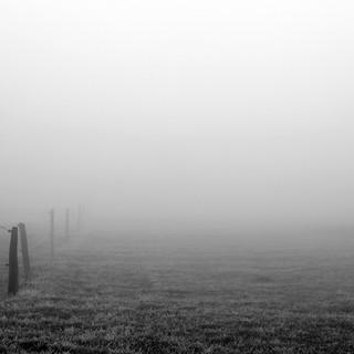Fotografie Nebel3