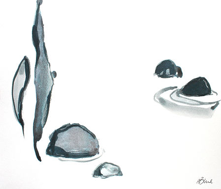 Araminta Blue - Petal, Anther, Peace