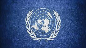 logo-de-la-onu-32769.jpg
