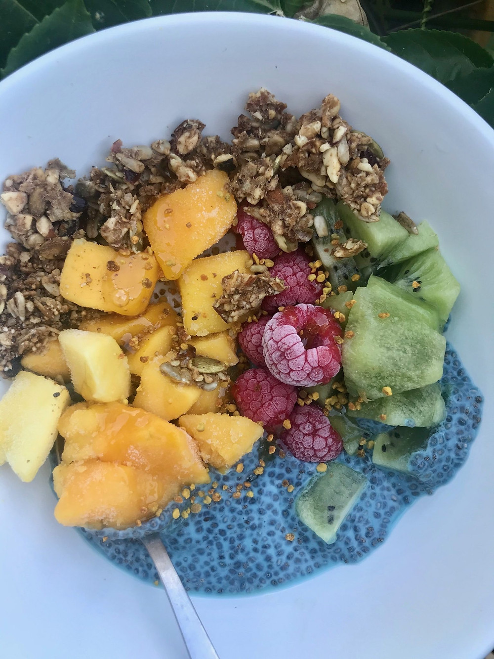 This beautiful Chia Bowl incorporates Irish Moss and tropical fruits to make it colorful and delicious.