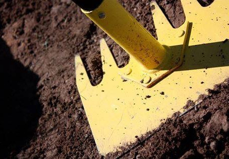 Trail Maintenance Day 12/7/19 (click link for details)