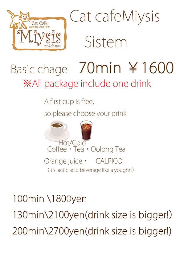 miysis sistem  ミーシスシステム