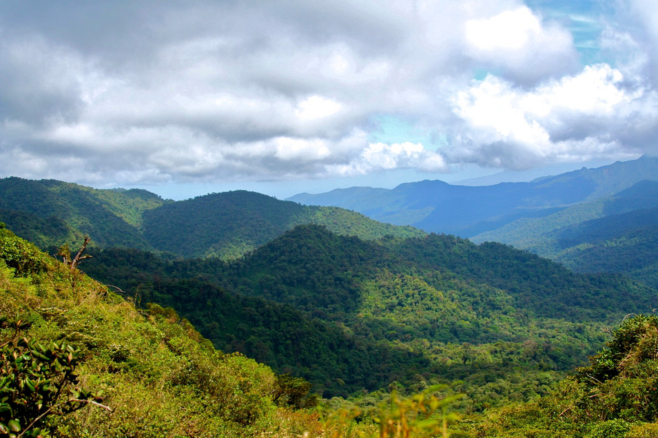 Monteverde Cloud Forest - Continental Divide
