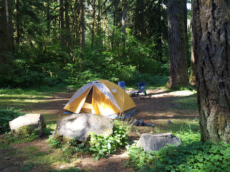 Gear Review: REI Half Dome 2 Tent