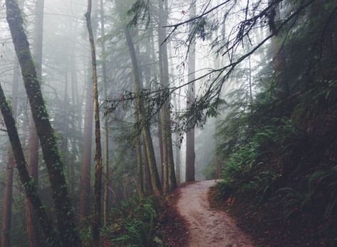 Bucket List: Oregon Experiences