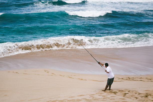 North Shore catch