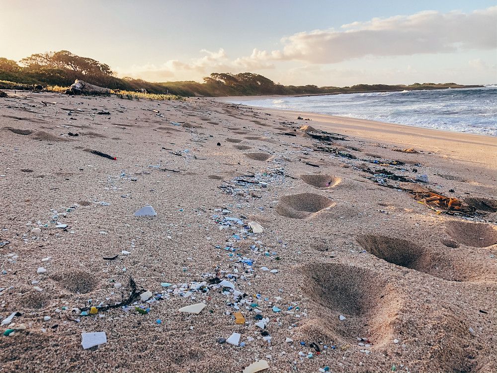 A plastic-polluted beach in Hawaii