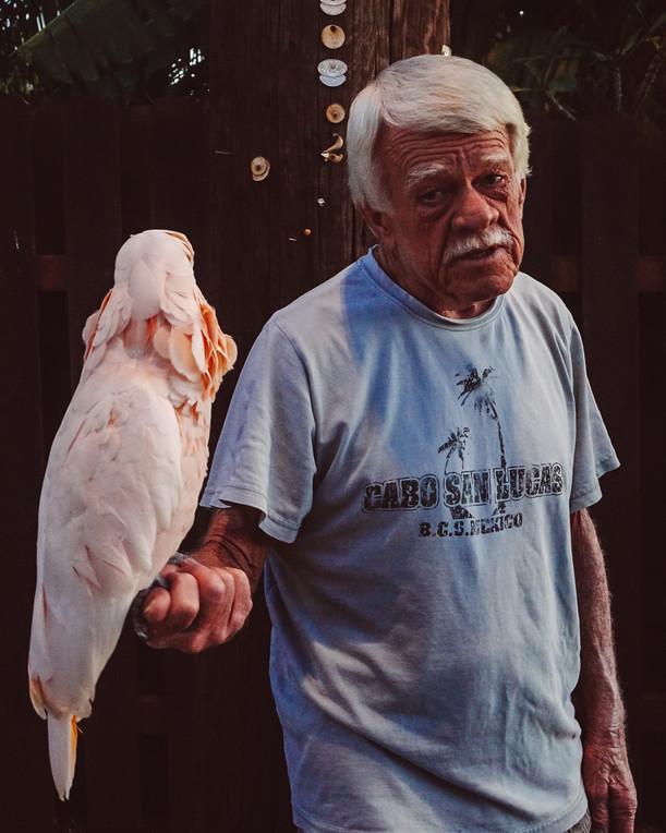 Cockatoo friend