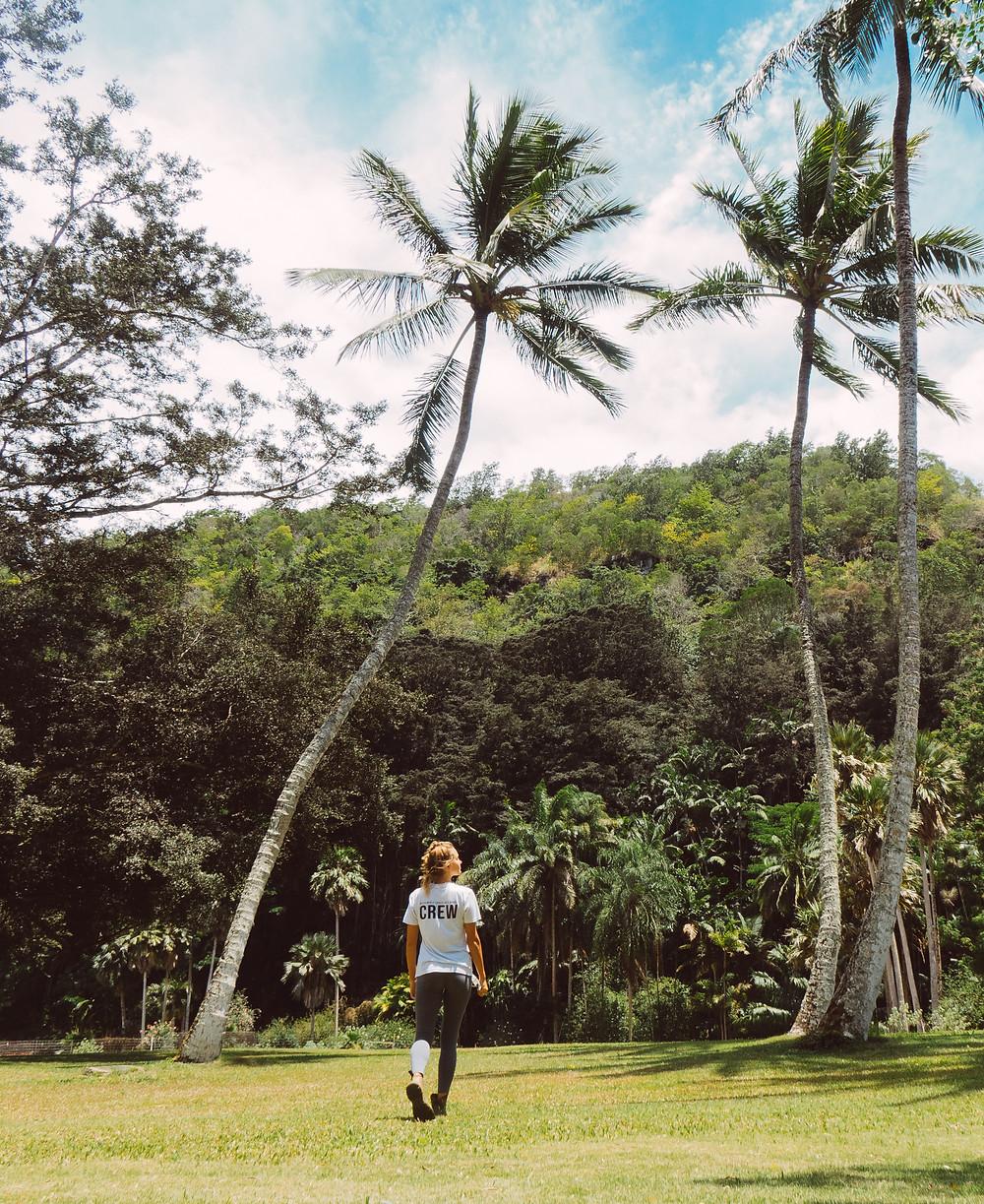 A girl is walking in the jungles. Photograph a volunteer in Waimea Valley, Oahu, Hawaii.