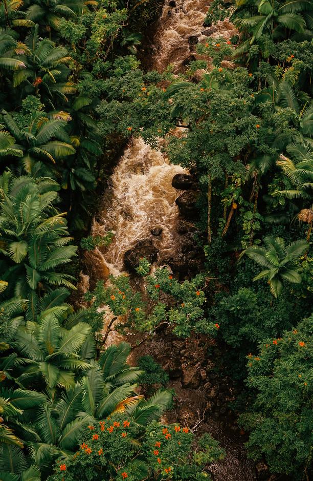 Waterfall through the jungle
