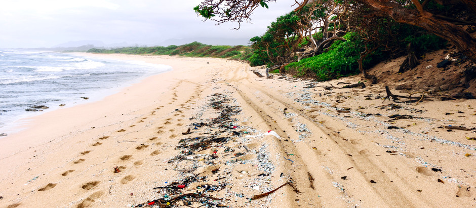 ENDLESS CIRCLE OF RECYCLING IN HAWAII