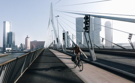 Rotterdam modernity