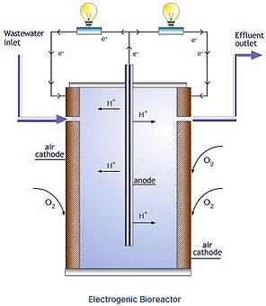 Bioreactor_electrogénico.png