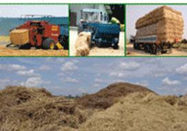 Biomasa.png 2015-6-15-2:4:54