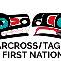 CTFN-logo-Main-RGB-Sml.png