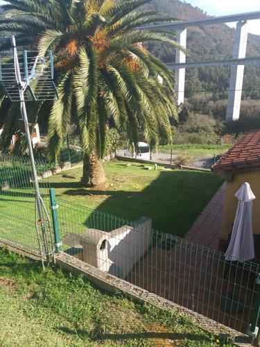 1 jardin .jpg