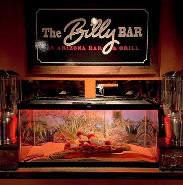 Billy Bar Logo.jpg