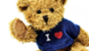 teddy-3583714_1920.jpg