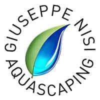 @giuseppe_nisi_aquascaping