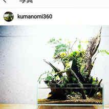 @kumanomi.360