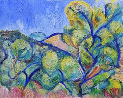 Olive groves, Padre Aviles