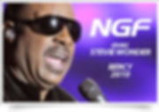 NGF avec Stevie Wonder Bercy 2010