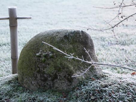 Neue Winterbilder