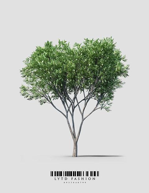 Patenschaft für einen Baum