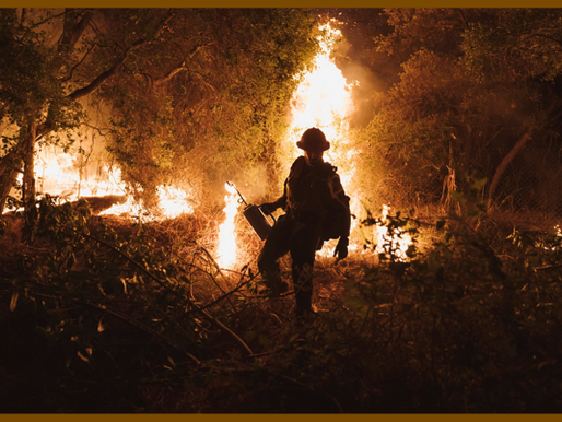 California is Facing Major Climate Change Due to Constant Wildfires